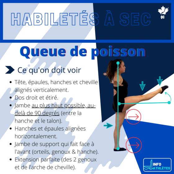 Info-Athlètes _ habiletés à sec (2)